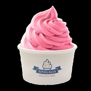Mix à glace Framboise Sinigalia